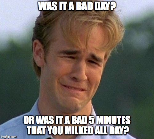 1990s First World Problems Meme | WAS IT A BAD DAY? OR WAS IT A BAD 5 MINUTES THAT YOU MILKED ALL DAY? | image tagged in memes,1990s first world problems | made w/ Imgflip meme maker