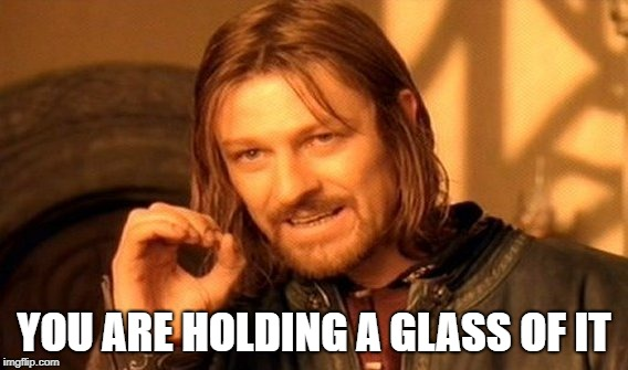 One Does Not Simply Meme | YOU ARE HOLDING A GLASS OF IT | image tagged in memes,one does not simply | made w/ Imgflip meme maker