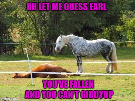 "We'll have you up before you can say ""furlong""!!! 