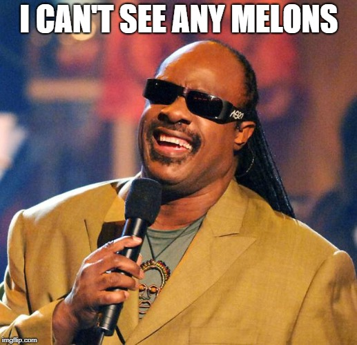 Stevie Wonder Solar Eclipse | I CAN'T SEE ANY MELONS | image tagged in stevie wonder solar eclipse | made w/ Imgflip meme maker