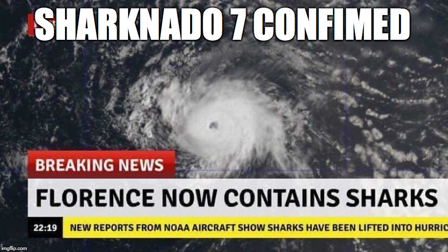 ITS THE NEW SHARKNADO WE ALL HAVE BEEN WAITING FOR  | SHARKNADO 7 CONFIMED | image tagged in funny,memes,sharknado,hurricane,hurricane florence | made w/ Imgflip meme maker