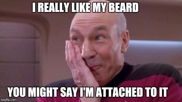 picard oops | I REALLY LIKE MY BEARD YOU MIGHT SAY I'M ATTACHED TO IT | image tagged in picard oops | made w/ Imgflip meme maker