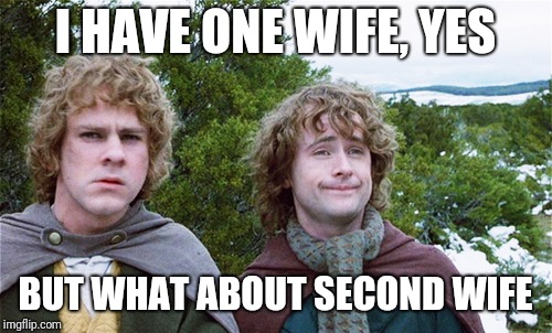 I HAVE ONE WIFE, YES BUT WHAT ABOUT SECOND WIFE | image tagged in polygamy | made w/ Imgflip meme maker