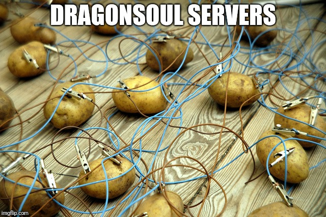 DRAGONSOUL SERVERS | image tagged in potato servers | made w/ Imgflip meme maker