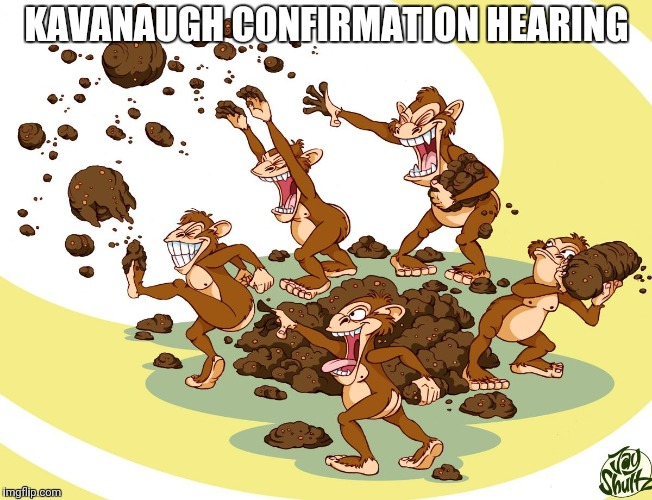 KAVANAUGH CONFIRMATION HEARING | image tagged in poop toss | made w/ Imgflip meme maker