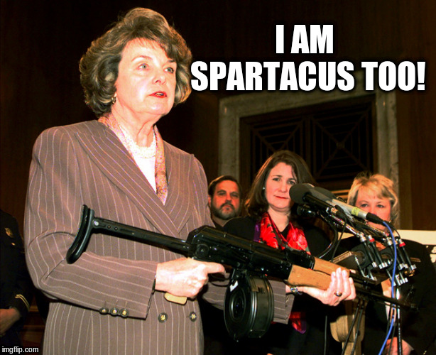 I AM SPARTACUS TOO! | image tagged in diane feinstein ak47 | made w/ Imgflip meme maker