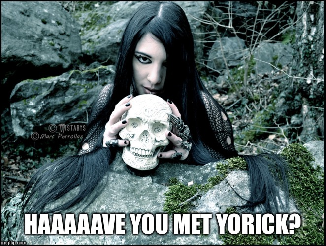 HAAAAAVE YOU MET YORICK? | image tagged in mistabys gothic girl | made w/ Imgflip meme maker