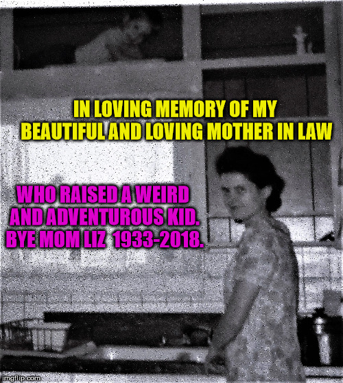 The world lost a beautiful woman..now she belongs to the ages.  | IN LOVING MEMORY OF MY BEAUTIFUL AND LOVING MOTHER IN LAW WHO RAISED A WEIRD AND ADVENTUROUS KID. BYE MOM LIZ  1933-2018. | image tagged in kid,cupboard,mother,dishes,in memory | made w/ Imgflip meme maker