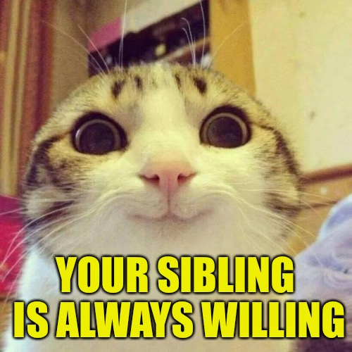 Smiling Cat Meme | YOUR SIBLING IS ALWAYS WILLING | image tagged in memes,smiling cat | made w/ Imgflip meme maker