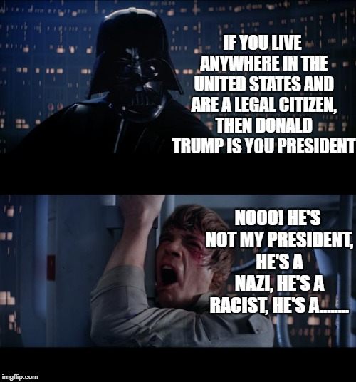 Star Wars No Meme | IF YOU LIVE ANYWHERE IN THE UNITED STATES AND ARE A LEGAL CITIZEN, THEN DONALD TRUMP IS YOU PRESIDENT NOOO! HE'S NOT MY PRESIDENT, HE'S A NA | image tagged in memes,star wars no | made w/ Imgflip meme maker