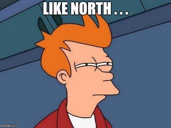 Futurama Fry Meme | LIKE NORTH . . . | image tagged in memes,futurama fry | made w/ Imgflip meme maker