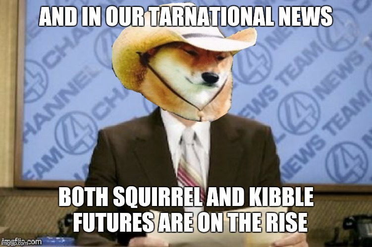 What in tarnational news? | AND IN OUR TARNATIONAL NEWS BOTH SQUIRREL AND KIBBLE  FUTURES ARE ON THE RISE | image tagged in memes,what in tarnation,ron burgundy,news,squirrel | made w/ Imgflip meme maker