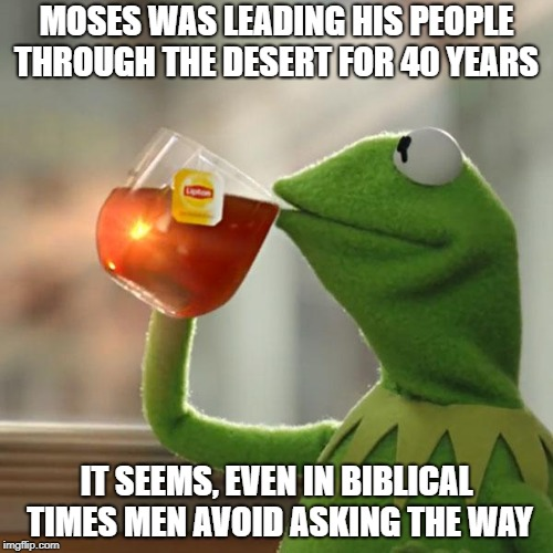 But Thats None Of My Business Meme | MOSES WAS LEADING HIS PEOPLE THROUGH THE DESERT FOR 40 YEARS IT SEEMS, EVEN IN BIBLICAL TIMES MEN AVOID ASKING THE WAY | image tagged in memes,but thats none of my business,kermit the frog,men don't like asking for directions | made w/ Imgflip meme maker