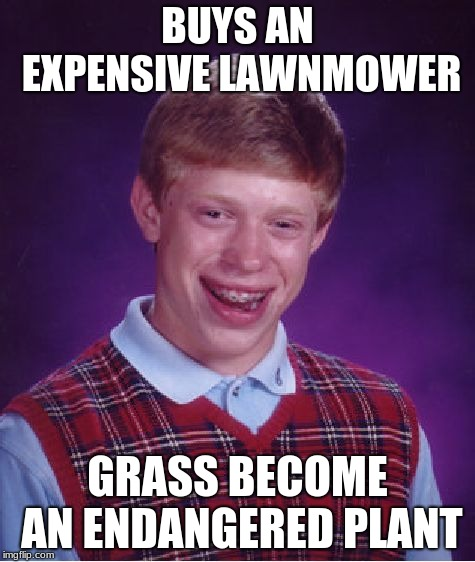 Fun fact: Grass is an invasive species  | BUYS AN EXPENSIVE LAWNMOWER GRASS BECOME AN ENDANGERED PLANT | image tagged in memes,bad luck brian | made w/ Imgflip meme maker
