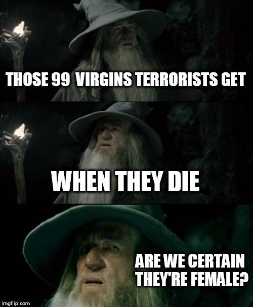 Would be best to make sure | THOSE 99  VIRGINS TERRORISTS GET WHEN THEY DIE ARE WE CERTAIN THEY'RE FEMALE? | image tagged in memes,confused gandalf,say no to terrorism,religion is poison | made w/ Imgflip meme maker