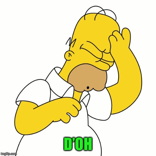 Homer D'Oh | D'OH | image tagged in homer d'oh | made w/ Imgflip meme maker