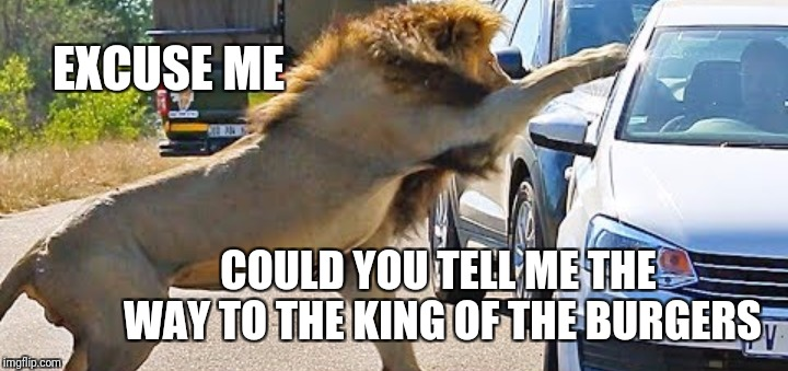 The king | EXCUSE ME COULD YOU TELL ME THE WAY TO THE KING OF THE BURGERS | image tagged in memes,animals,pets,funny,burger king,food | made w/ Imgflip meme maker