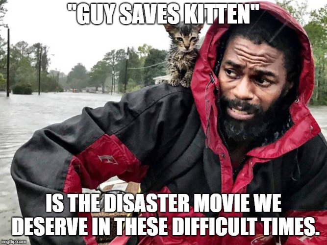 "Guy Saves Kitten | ""GUY SAVES KITTEN"" IS THE DISASTER MOVIE WE DESERVE IN THESE DIFFICULT TIMES. 