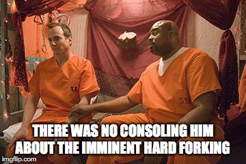 THERE WAS NO CONSOLING HIM ABOUT THE IMMINENT HARD FORKING | image tagged in prison bitch | made w/ Imgflip meme maker