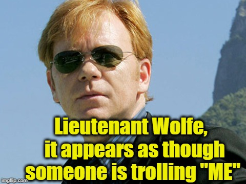 "Lieutenant Wolfe,  it appears as though someone is trolling ""ME"" 