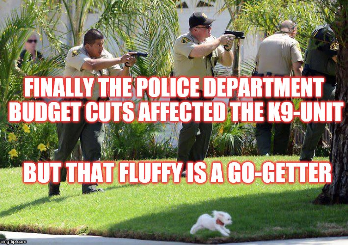 Fluffy the Police Dog | FINALLY THE POLICE DEPARTMENT BUDGET CUTS AFFECTED THE K9-UNIT BUT THAT FLUFFY IS A GO-GETTER | image tagged in police,k9,budget,funny,fluffy | made w/ Imgflip meme maker
