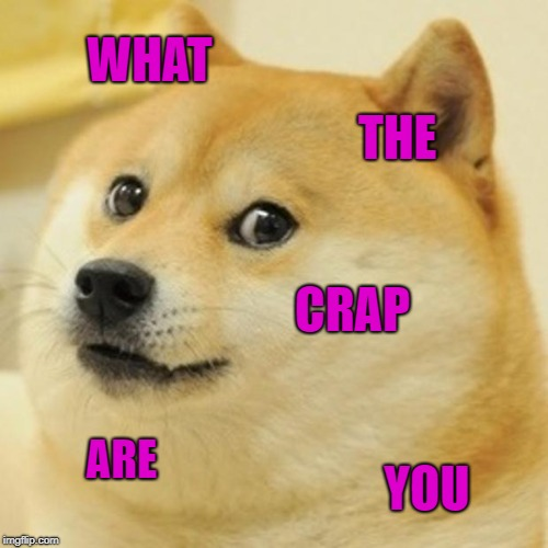 Doge Meme | WHAT THE CRAP ARE YOU | image tagged in memes,doge | made w/ Imgflip meme maker
