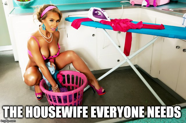 Nicole Aniston Housewife  | THE HOUSEWIFE EVERYONE NEEDS | image tagged in hot girl,sexy women | made w/ Imgflip meme maker