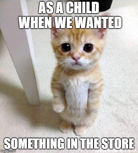 Cute Cat Meme | AS A CHILD WHEN WE WANTED SOMETHING IN THE STORE | image tagged in memes,cute cat,teddyarchive,funny | made w/ Imgflip meme maker