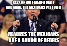 SAYS HE WILL MAKE A WALL AND MAKE THE MEXICANS PAY FOR IT REALIZES THE MEXICANS ARE A BUNCH OF REBELS | image tagged in donald trump | made w/ Imgflip meme maker