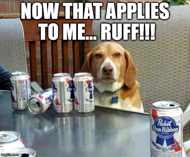 beer dog | NOW THAT APPLIES TO ME... RUFF!!! | image tagged in beer dog | made w/ Imgflip meme maker