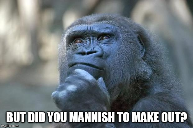 that is the question | BUT DID YOU MANNISH TO MAKE OUT? | image tagged in that is the question | made w/ Imgflip meme maker