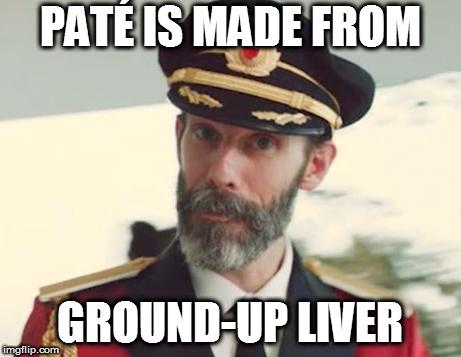 Captain Obvious | PATÉ IS MADE FROM GROUND-UP LIVER | image tagged in captain obvious | made w/ Imgflip meme maker