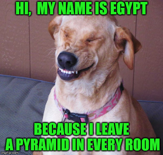 Laughing Dog | HI,  MY NAME IS EGYPT BECAUSE I LEAVE A PYRAMID IN EVERY ROOM | image tagged in laughing dog,memes | made w/ Imgflip meme maker
