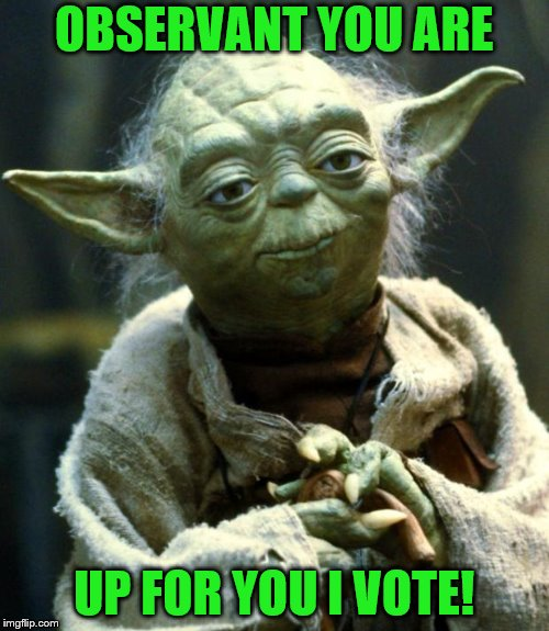 Star Wars Yoda Meme | OBSERVANT YOU ARE UP FOR YOU I VOTE! | image tagged in memes,star wars yoda | made w/ Imgflip meme maker