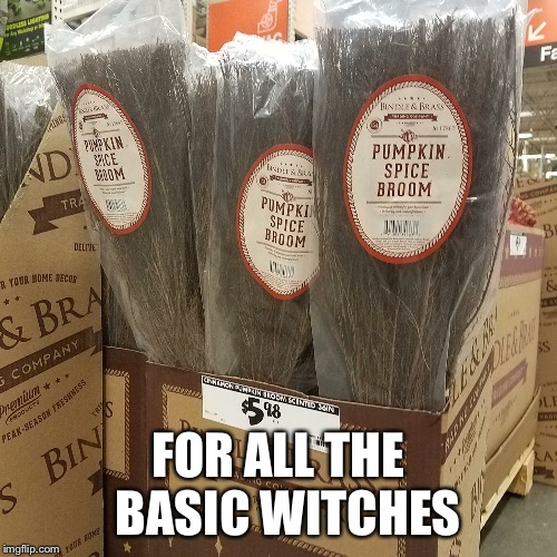 For all the Basic Witches | FOR ALL THE  BASIC WITCHES | image tagged in basic,witches,pumpkin spice,halloween,broom,brooms | made w/ Imgflip meme maker