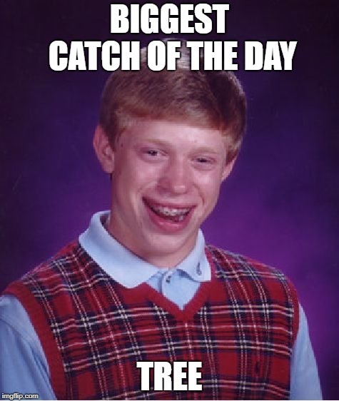 Bad Luck Brian Meme | BIGGEST CATCH OF THE DAY TREE | image tagged in memes,bad luck brian | made w/ Imgflip meme maker