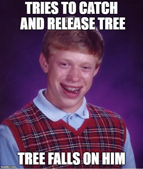 Bad Luck Brian Meme | TRIES TO CATCH AND RELEASE TREE TREE FALLS ON HIM | image tagged in memes,bad luck brian | made w/ Imgflip meme maker