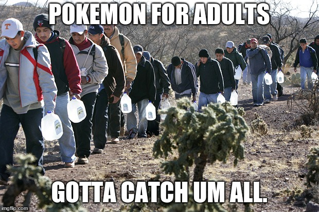 POKEMON FOR ADULTS GOTTA CATCH UM ALL. | image tagged in mexican immigration | made w/ Imgflip meme maker