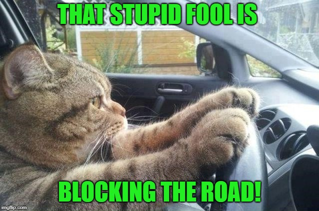 THAT STUPID FOOL IS BLOCKING THE ROAD! | made w/ Imgflip meme maker