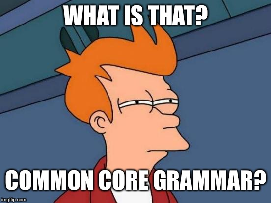 Futurama Fry Meme | WHAT IS THAT? COMMON CORE GRAMMAR? | image tagged in memes,futurama fry | made w/ Imgflip meme maker