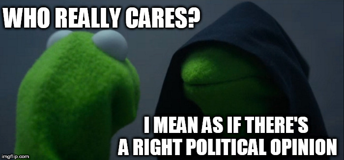 Who gives a Frogging frog? | WHO REALLY CARES? I MEAN AS IF THERE'S A RIGHT POLITICAL OPINION | image tagged in memes,evil kermit,kermit,the,political activist,who | made w/ Imgflip meme maker