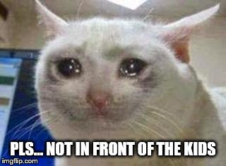 Sad cat | PLS... NOT IN FRONT OF THE KIDS | image tagged in sad cat | made w/ Imgflip meme maker