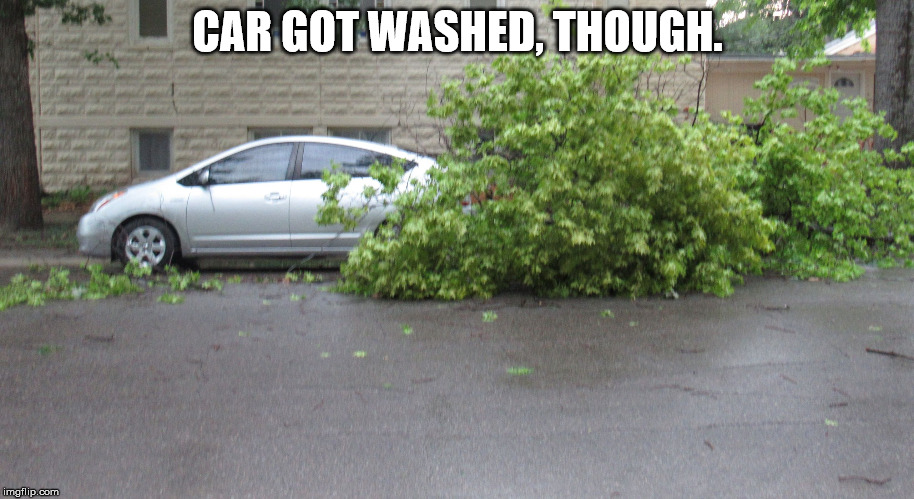 Tree getting its car(bs) | CAR GOT WASHED, THOUGH. | image tagged in tree getting its carbs | made w/ Imgflip meme maker
