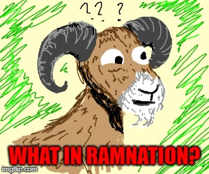 WHAT IN RAMNATION? | made w/ Imgflip meme maker
