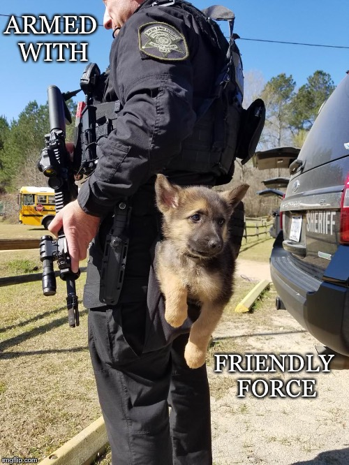 Watch Out! | ARMED WITH FRIENDLY FORCE | image tagged in police,dog,german shepherd,armed,friendly,force | made w/ Imgflip meme maker