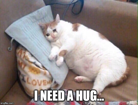 cat sad | I NEED A HUG... | image tagged in cat sad | made w/ Imgflip meme maker
