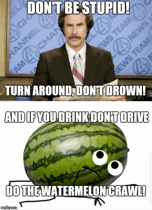 Ron Burgandy PSA | DON'T BE STUPID! TURN AROUND, DON'T DROWN! AND IF YOU DRINK DON'T DRIVE DO THE WATERMELON CRAWL! | image tagged in watermelon,ron burgundy,don't be stupid,crawl,turn around,drown | made w/ Imgflip meme maker