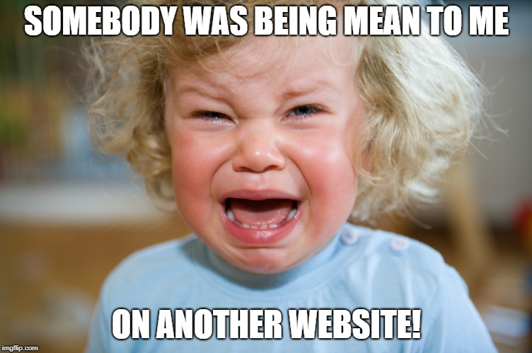 temper-tantrum | SOMEBODY WAS BEING MEAN TO ME ON ANOTHER WEBSITE! | image tagged in temper-tantrum,cyberbullying | made w/ Imgflip meme maker