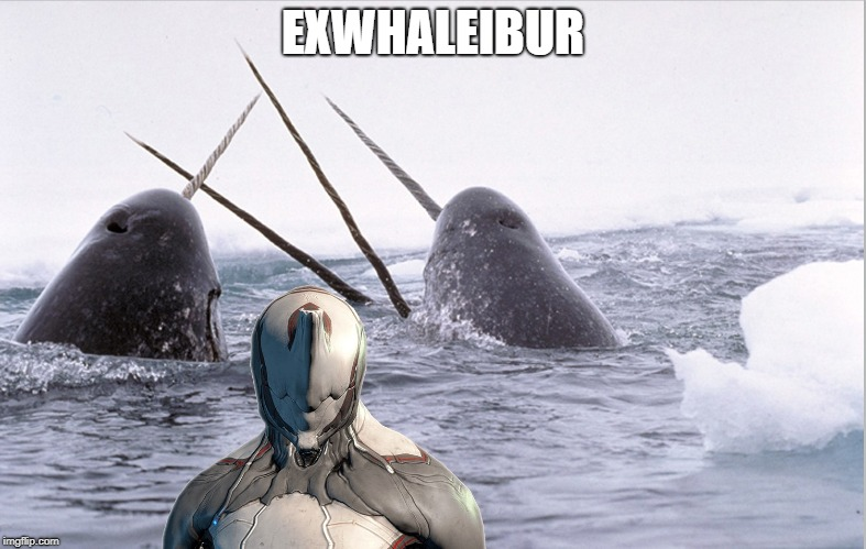 """excalibur looks like a narwhale"" 