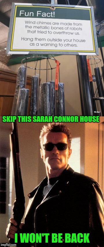 Fight the machine | SKIP THIS SARAH CONNOR HOUSE I WON'T BE BACK | image tagged in terminator,arnold,chimes,sign,pipe_picasso | made w/ Imgflip meme maker